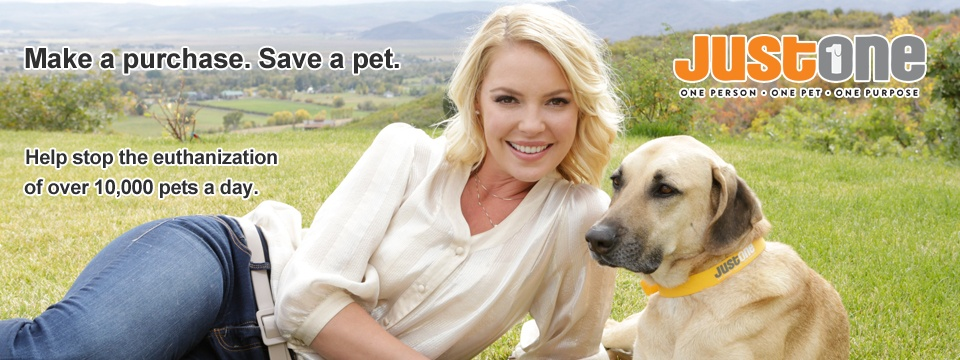 The Jason Debus Heigl Foundation - Dog People Are Cool Katherine Heigl Foundation