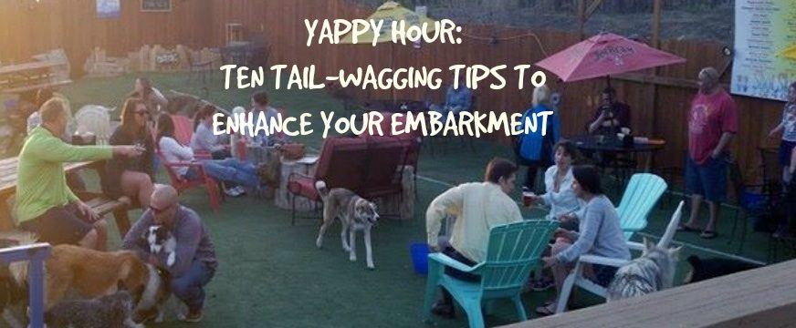 yappy hour: ten tail - wagging tips to enhance your embarkment
